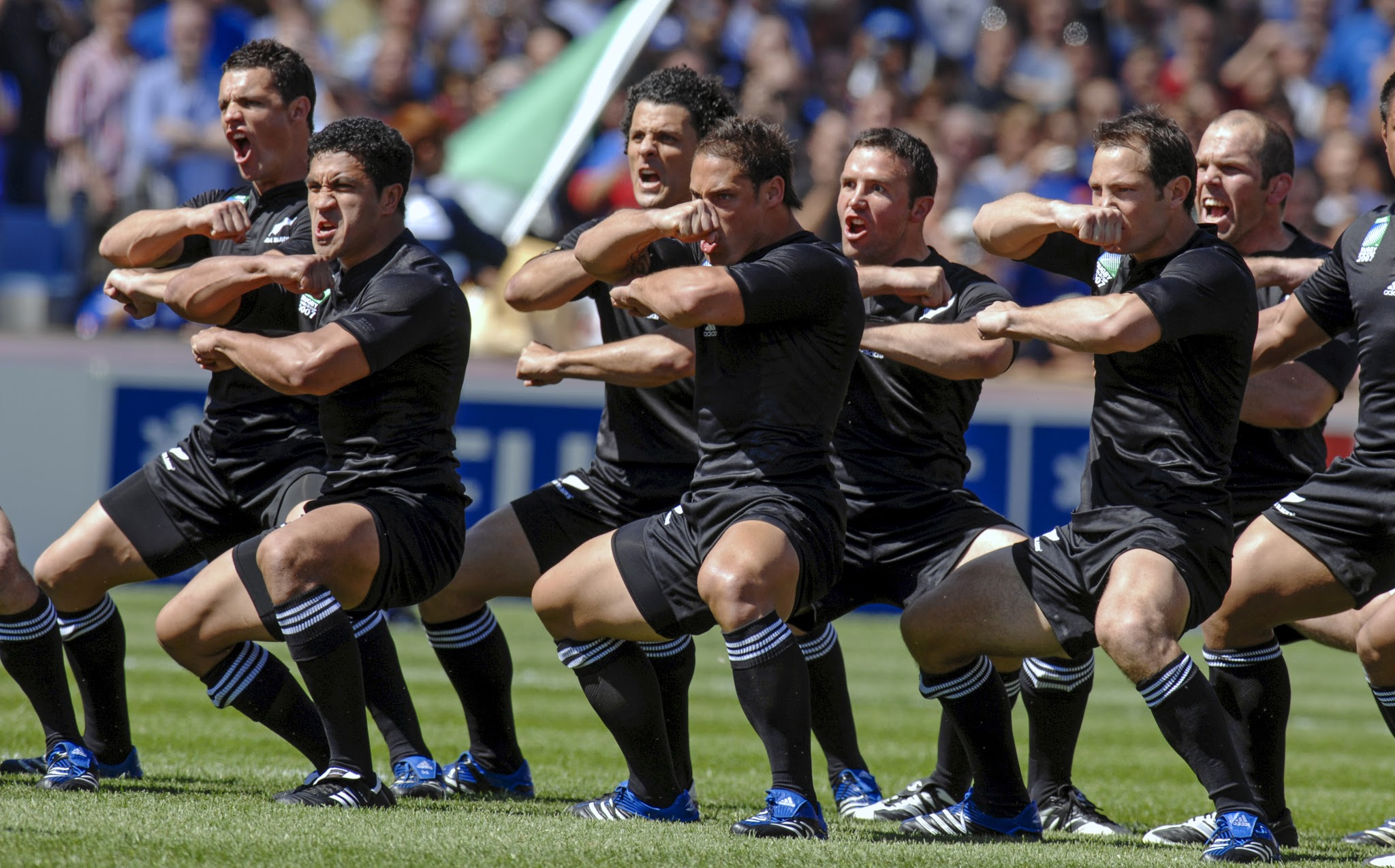 What your business can learn from the All Blacks